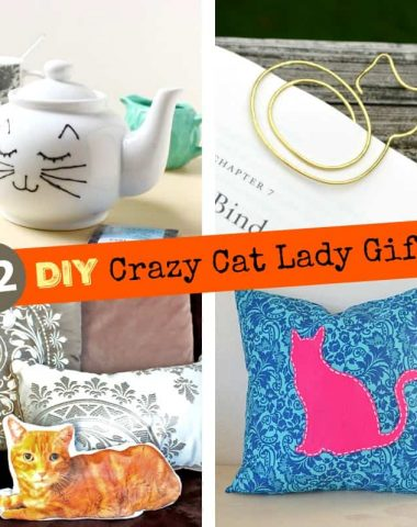 22 DIY Crazy Cat Lady Gifts