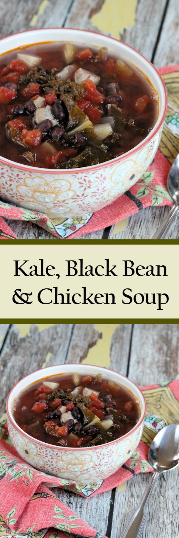 Kale, Bean & Chicken Soup