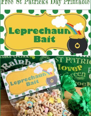 Leprechaun Bait free printable