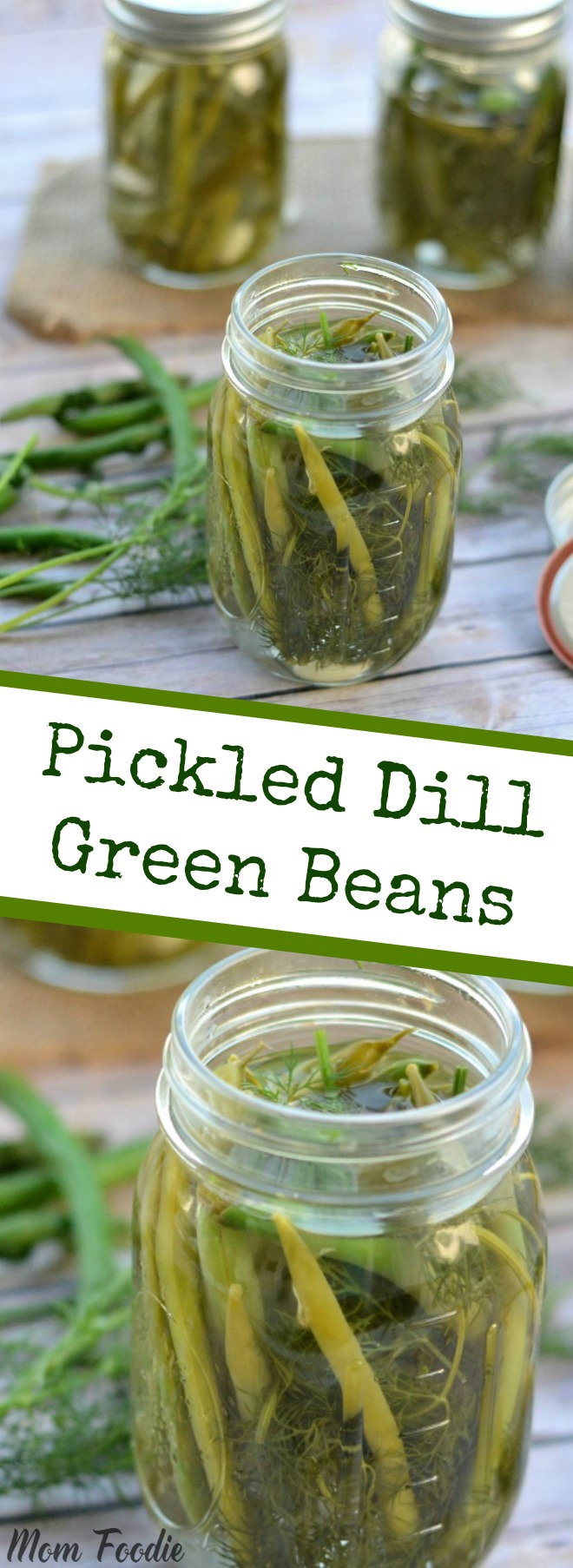 Pickled Green Beans with Dill