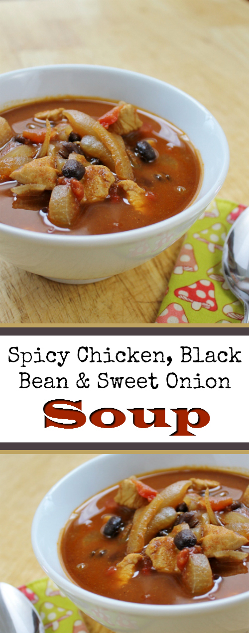 Spicy Chicken, Black Bean & Sweet Onion Soup