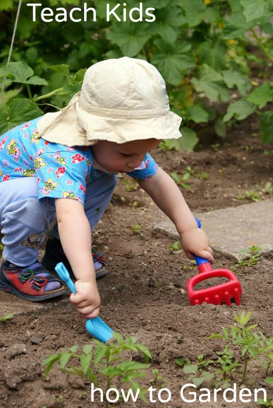 Teach Kids how to Garden