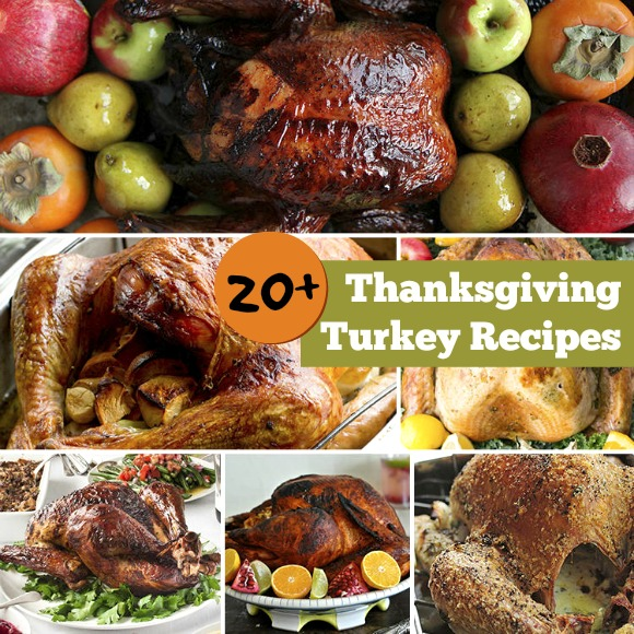 Thanksgiving Turkey Recipes Collection