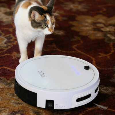 Kiki and Frisky Meet bObi the Robot Vacuum: A Lazy Housekeeper's Dream Tool