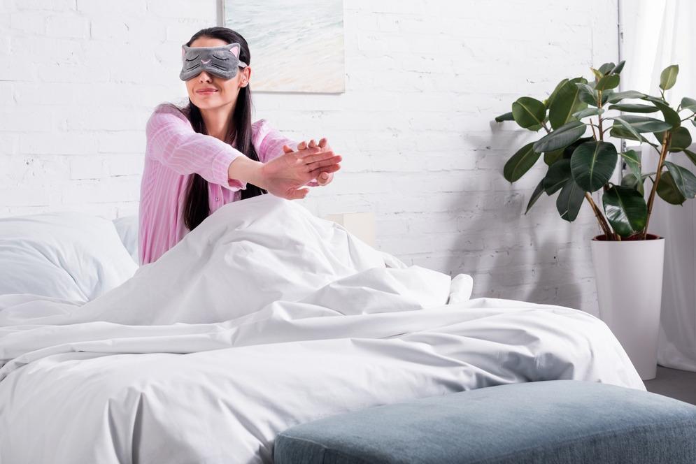 bedroom plants for restful sleep