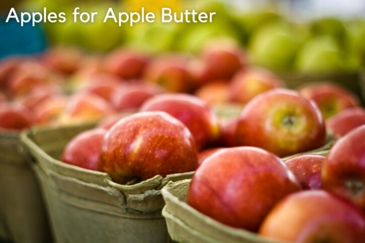 Best apples for apple butter in store.