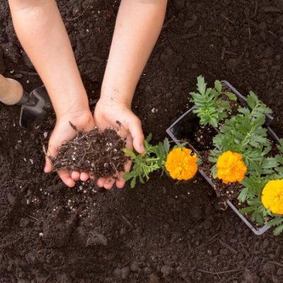 Fun Ways to Teach Children Gardening