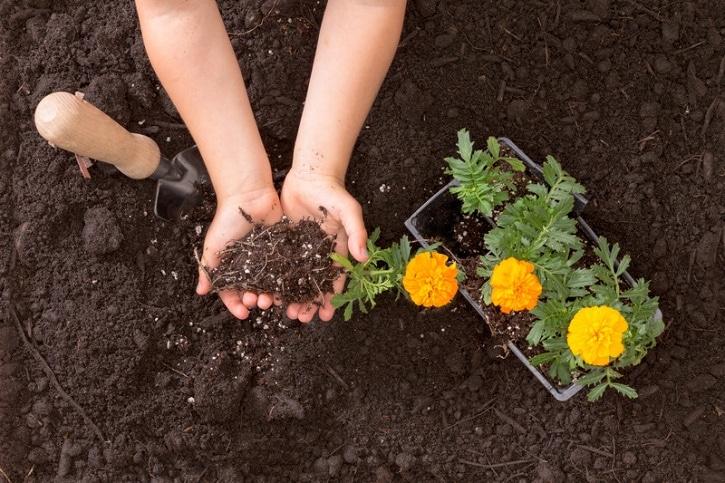 fun ways to teach children gardening mom foodie. Black Bedroom Furniture Sets. Home Design Ideas