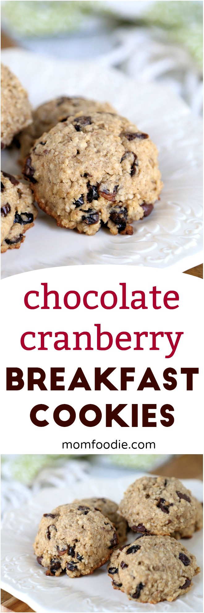 Cranberry Oatmeal Breakfast Cookies with Chocolate Chips - Healthy Breakfast Cookies Recipe #cookies #breakfast #oatmealcookies