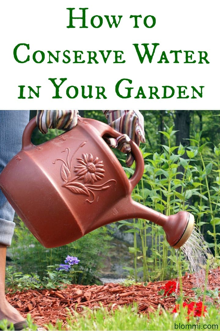 How To Conserve Water In The Garden Water Efficient Gardening