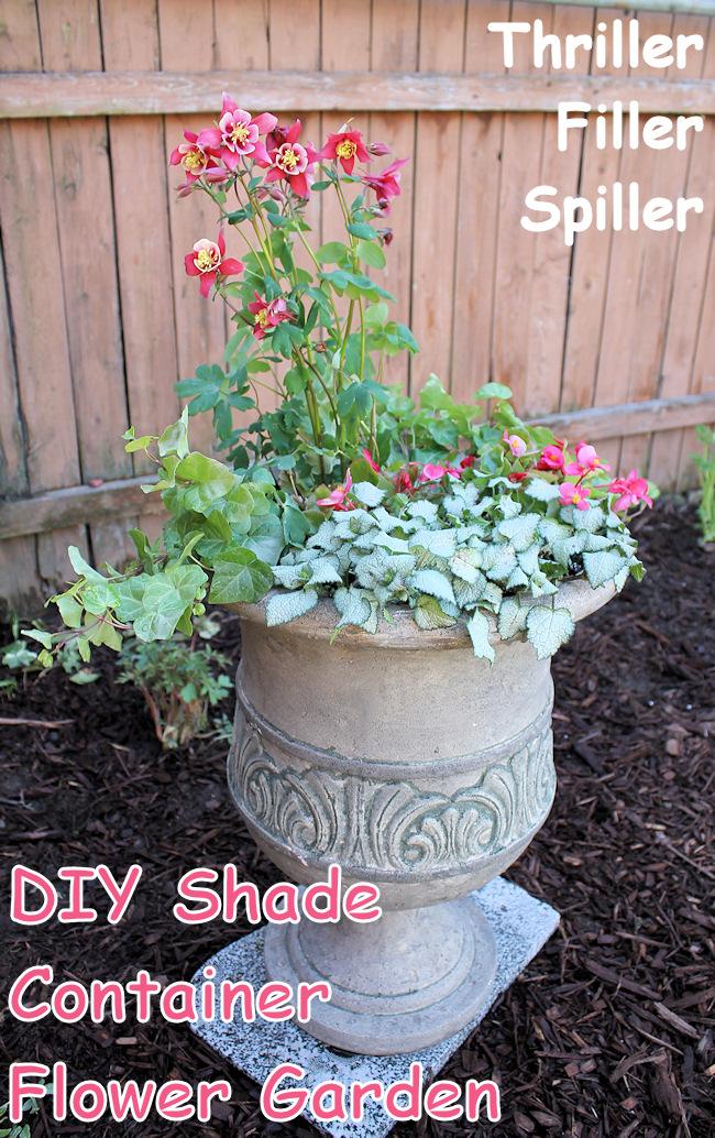 container shade flower garden