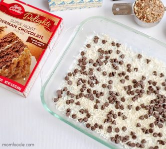 earthquake cake chocolate chips
