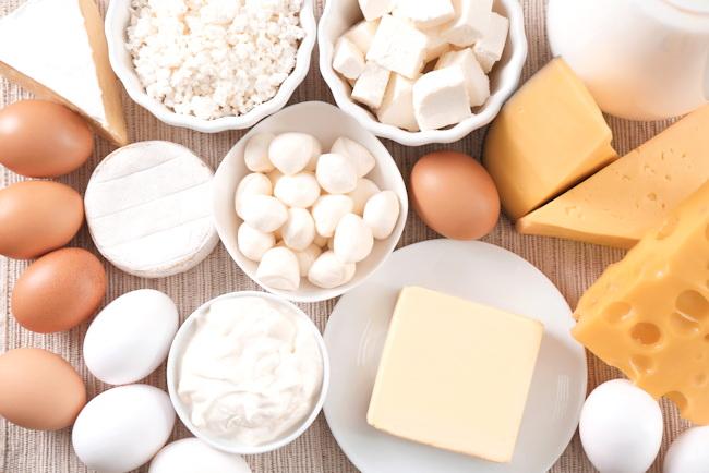 eggs and cheese bone health