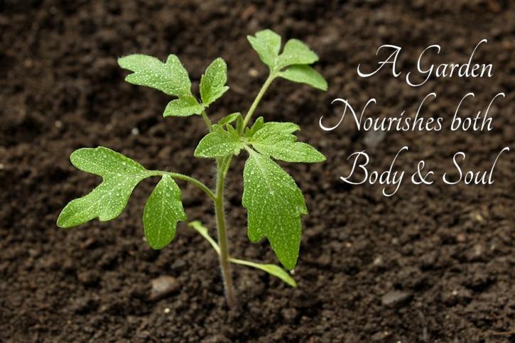a garden nourishes