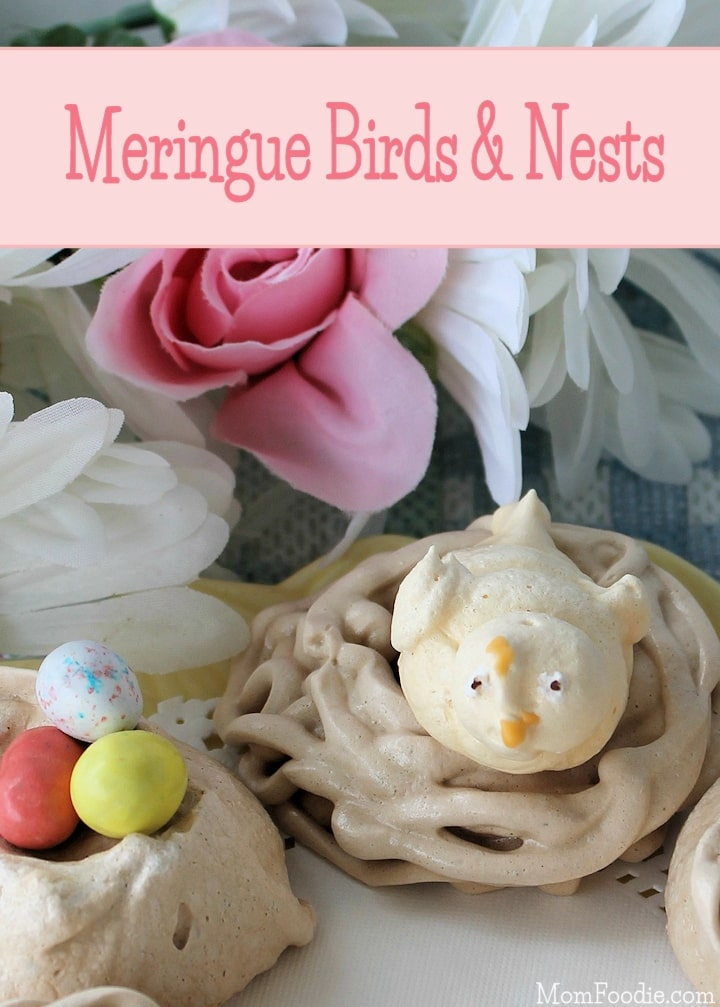 meringue birds & nests