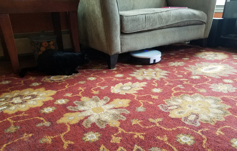 robot vacuum cleaning under couch