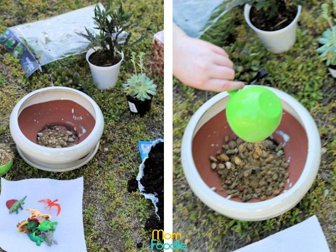 starting dinosaur planter