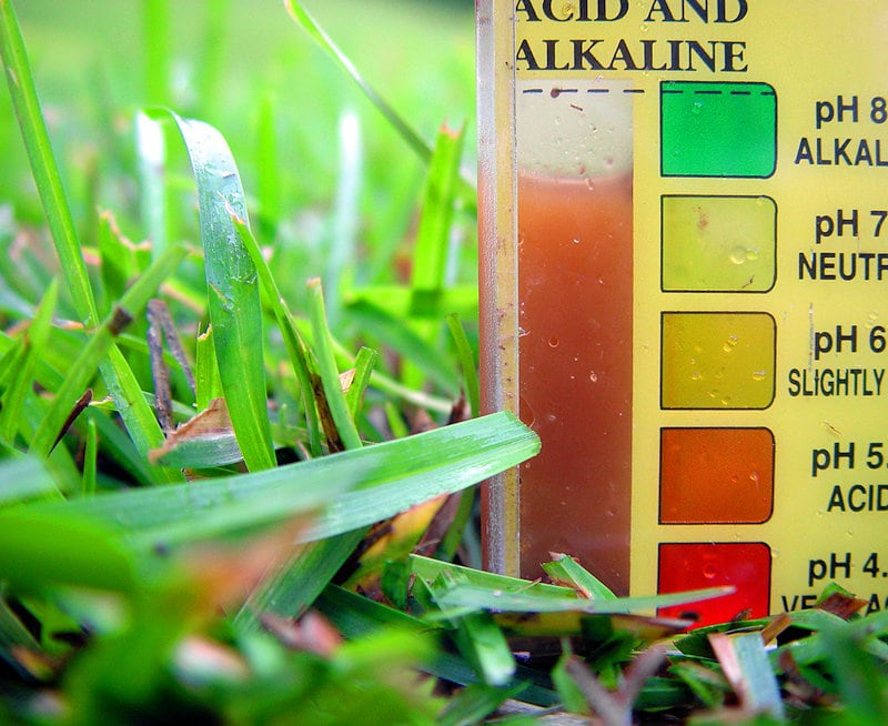 test soil ph