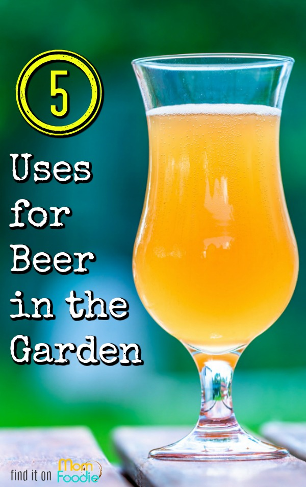uses for beer in the garden
